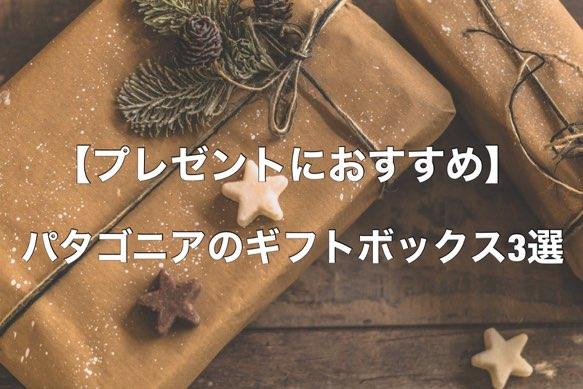 【プレゼントにおすすめ】パタゴニアのギフトボックス3選